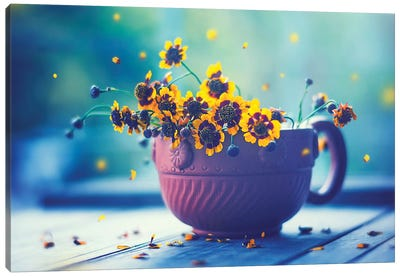 Happy Everyday Canvas Art Print