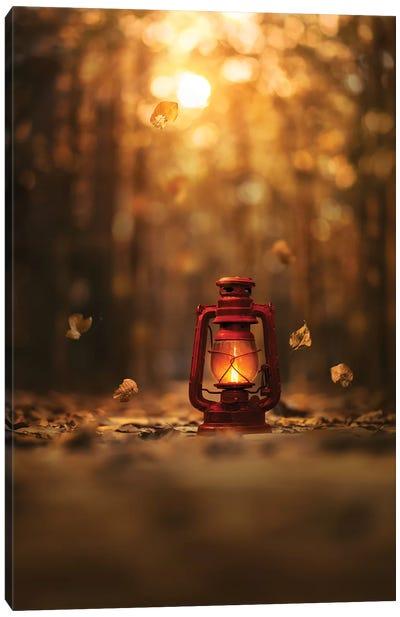 Light Of Autumn Canvas Art Print