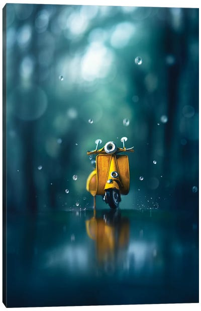 Little Rain Canvas Art Print
