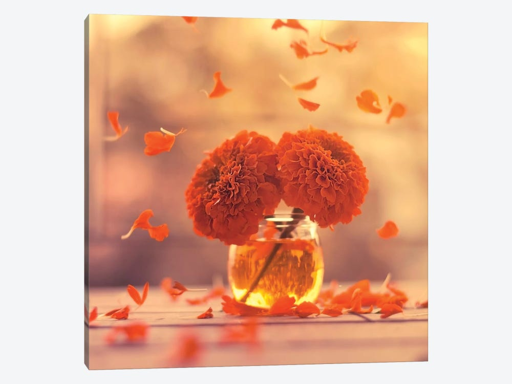 Marigold Days by Ashraful Arefin 1-piece Canvas Print