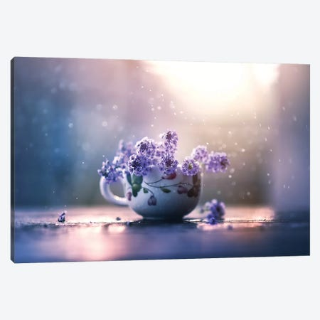 Printemps Canvas Print #ASR22} by Ashraful Arefin Canvas Artwork