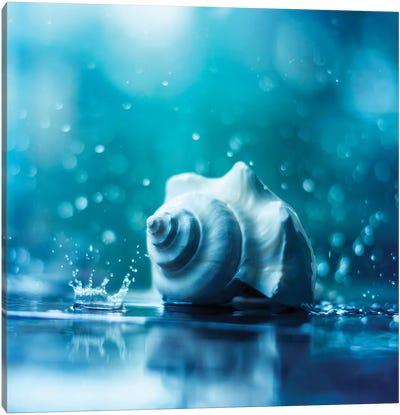 Song Of The Ocean Canvas Art Print