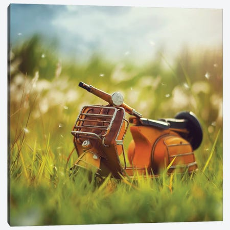 Summer Dreams Canvas Print #ASR30} by Ashraful Arefin Canvas Art Print
