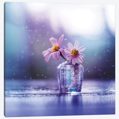 Sweet Melodies Canvas Print #ASR32} by Ashraful Arefin Canvas Print