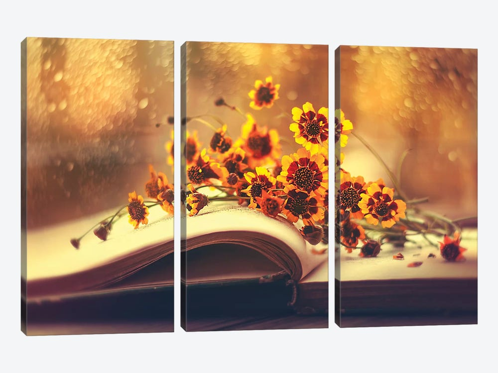 The Sunshine Within by Ashraful Arefin 3-piece Canvas Art