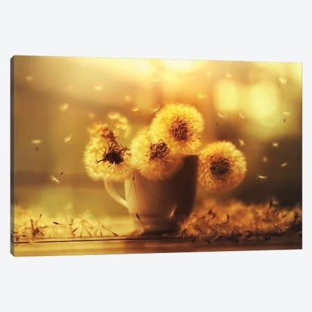 Wishful Canvas Print #ASR41} by Ashraful Arefin Canvas Art