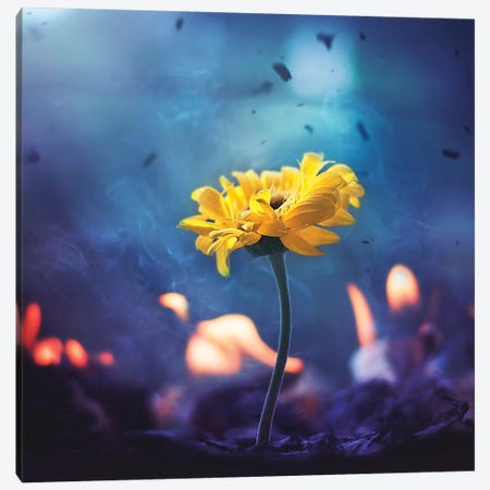 Yet Hope Remains Canvas Print #ASR42} by Ashraful Arefin Canvas Artwork