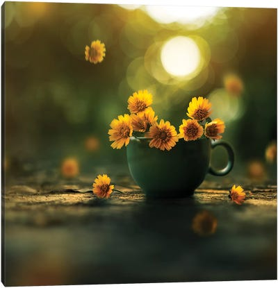 Cup Of Gold Canvas Art Print
