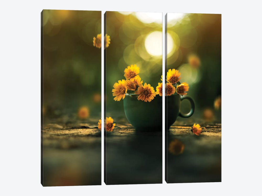 Cup Of Gold by Ashraful Arefin 3-piece Canvas Wall Art