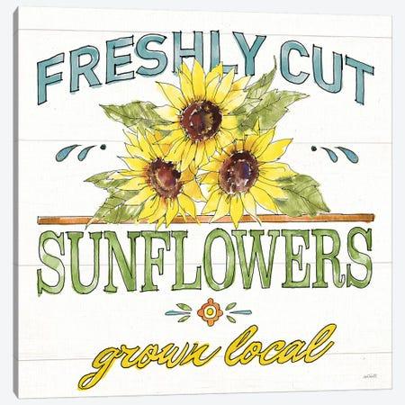 Sunflower Fields III Canvas Print #ATA179} by Anne Tavoletti Canvas Print
