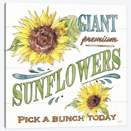 Sunflower Fields IV Canvas Print #ATA180} by Anne Tavoletti Canvas Art