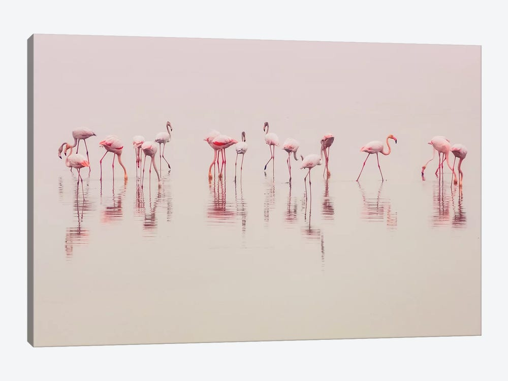 Water Ballet by Ahmed Thabet 1-piece Canvas Wall Art