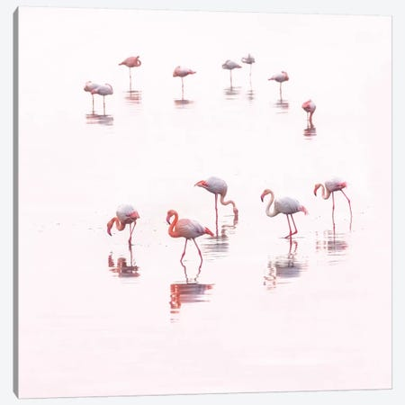 Water ballet Canvas Print #ATH2} by Ahmed Thabet Canvas Wall Art