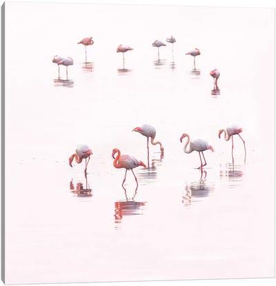 Water ballet Canvas Art Print