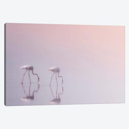 Serenity 3 Canvas Print #ATH4} by Ahmed Thabet Canvas Print