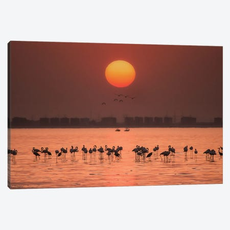 Remarkable Sunset Canvas Print #ATH8} by Ahmed Thabet Canvas Artwork