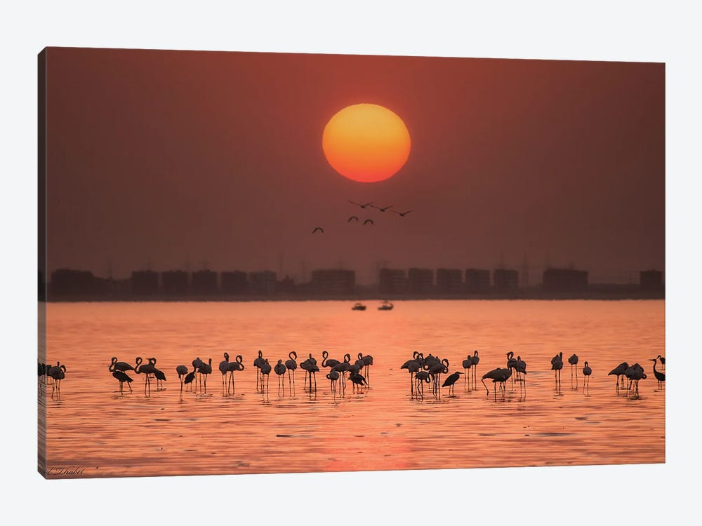 Remarkable Sunset by Ahmed Thabet 1-piece Canvas Art Print