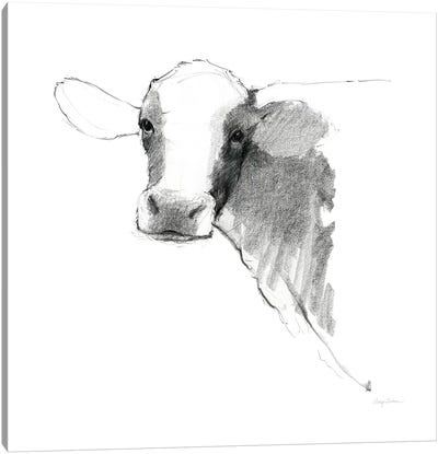 Cow II Dark Square by Avery Tillmon Canvas Art Print