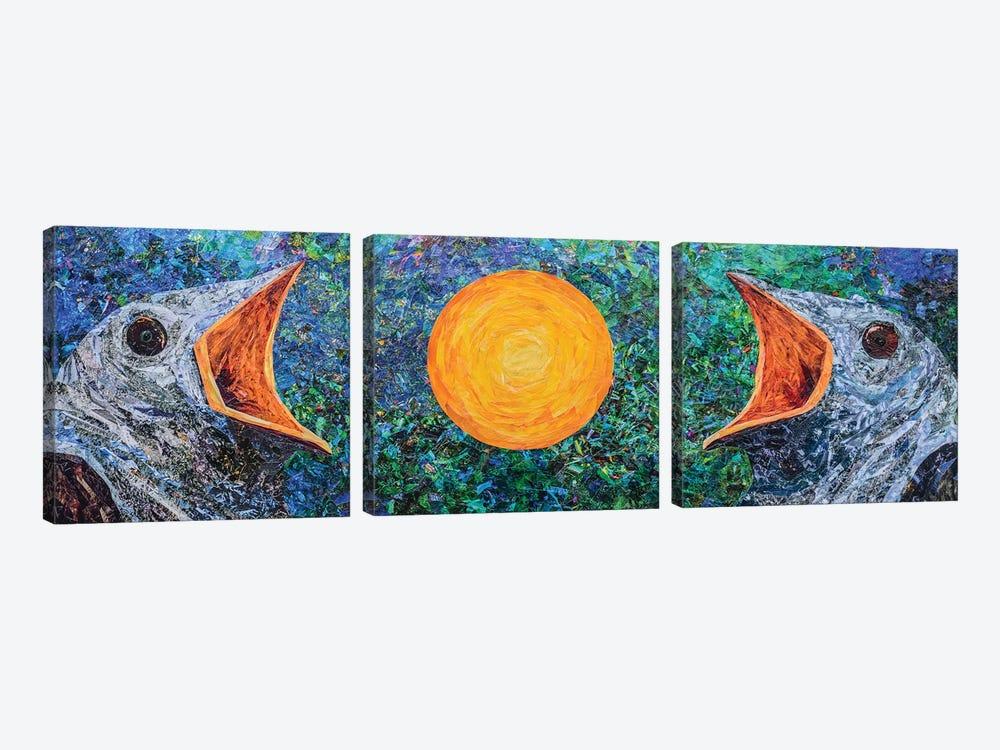 Cuckoo I by Albin Talik 3-piece Canvas Art Print