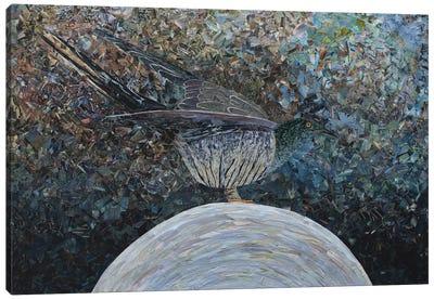 Cuckoo II Canvas Art Print