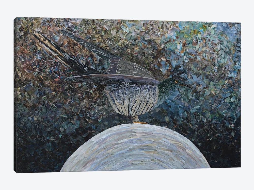 Cuckoo II by Albin Talik 1-piece Canvas Wall Art