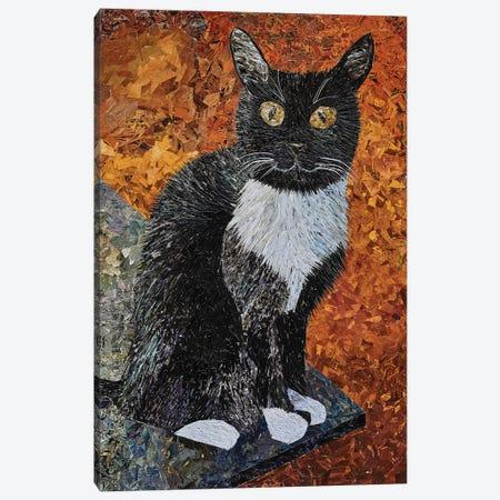 Cat Canvas Print #ATK7} by Albin Talik Canvas Art
