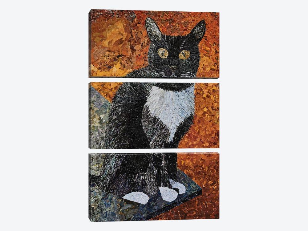 Cat by Albin Talik 3-piece Canvas Print