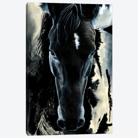 Dark Horse Canvas Print #ATT1} by Astra Taylor-Todd Canvas Print