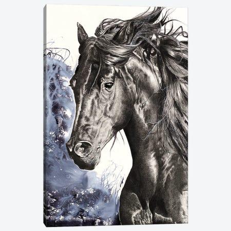 Wild Horse Canvas Print #ATT2} by Astra Taylor-Todd Canvas Print