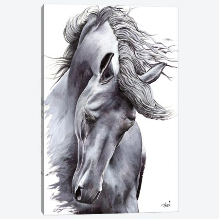 White Horse Canvas Print #ATT3} by Astra Taylor-Todd Canvas Art Print