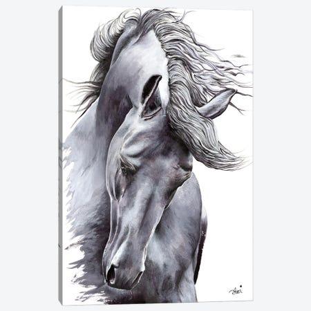 White Horse Canvas Print #ATT3} by Astra Taylor-Todd Canvas Art Print