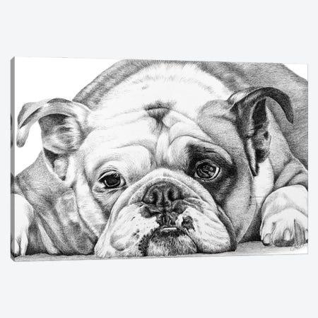 English Bulldog Canvas Print #ATT4} by Astra Taylor-Todd Canvas Wall Art