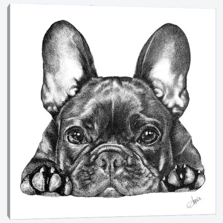 Frenchie Canvas Print #ATT5} by Astra Taylor-Todd Canvas Wall Art