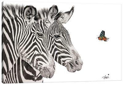 Madagascan Flutter Canvas Art Print