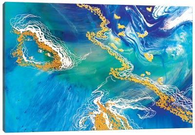 Heart Reef 8.1 Canvas Art Print