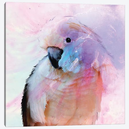 Parrot In Blush Canvas Print #ATU32} by Antuanelle Art Print