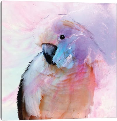 Parrot In Blush Canvas Art Print