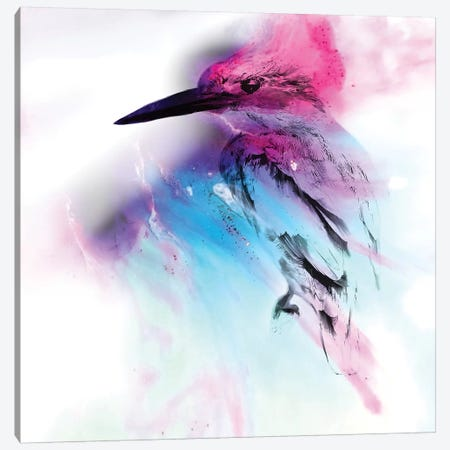 Pink And Blue Birdie Canvas Print #ATU33} by Antuanelle Canvas Print
