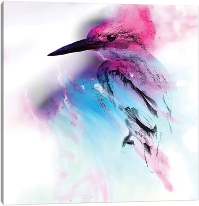 Pink And Blue Birdie Canvas Art Print