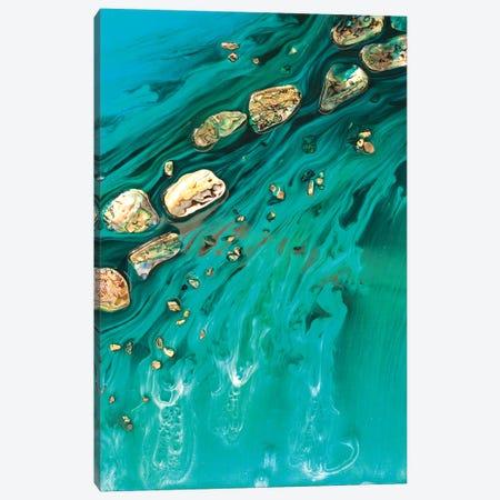 Rise Above Seashells Canvas Print #ATU40} by Antuanelle Canvas Artwork