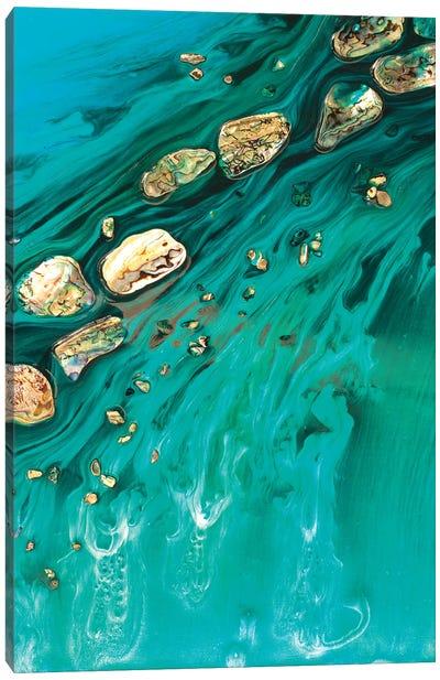 Rise Above Seashells Canvas Art Print
