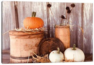 Autumn Pumpkins Canvas Art Print