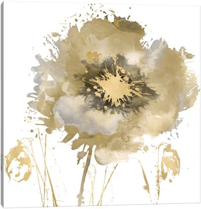 Flower Burst In Gold II Canvas Art Print