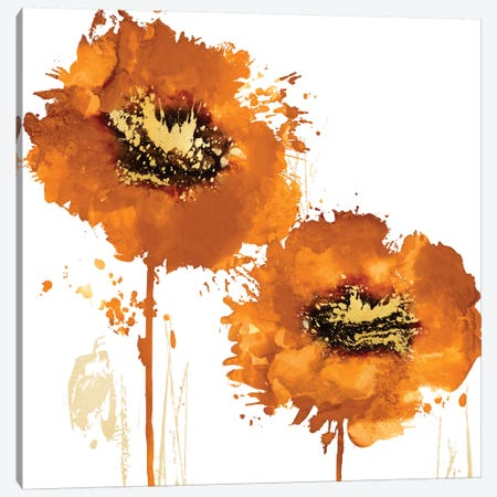Flower Burst In Mandarin II Canvas Print #AUS17} by Vanessa Austin Canvas Print