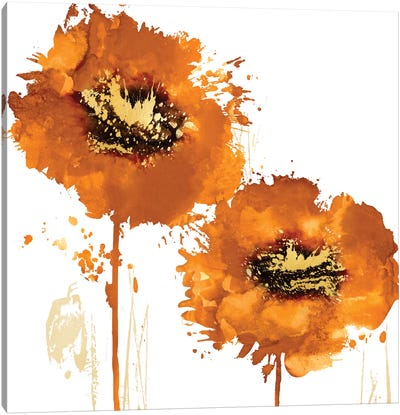 Flower Burst In Mandarin II Canvas Art Print
