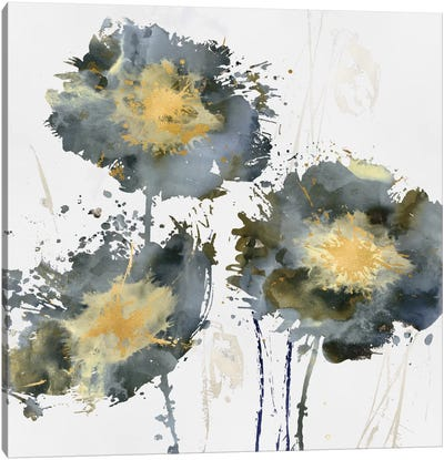 Flower Burst Trio Canvas Art Print
