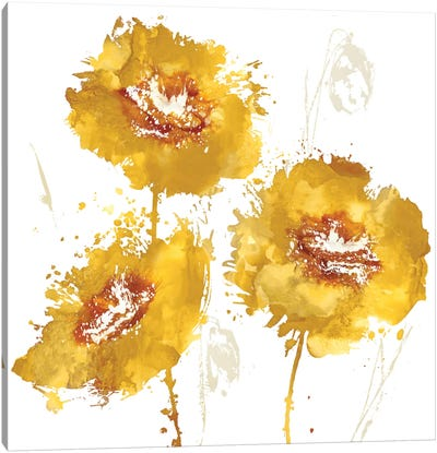 Flower Burst Trio In Amber Canvas Art Print