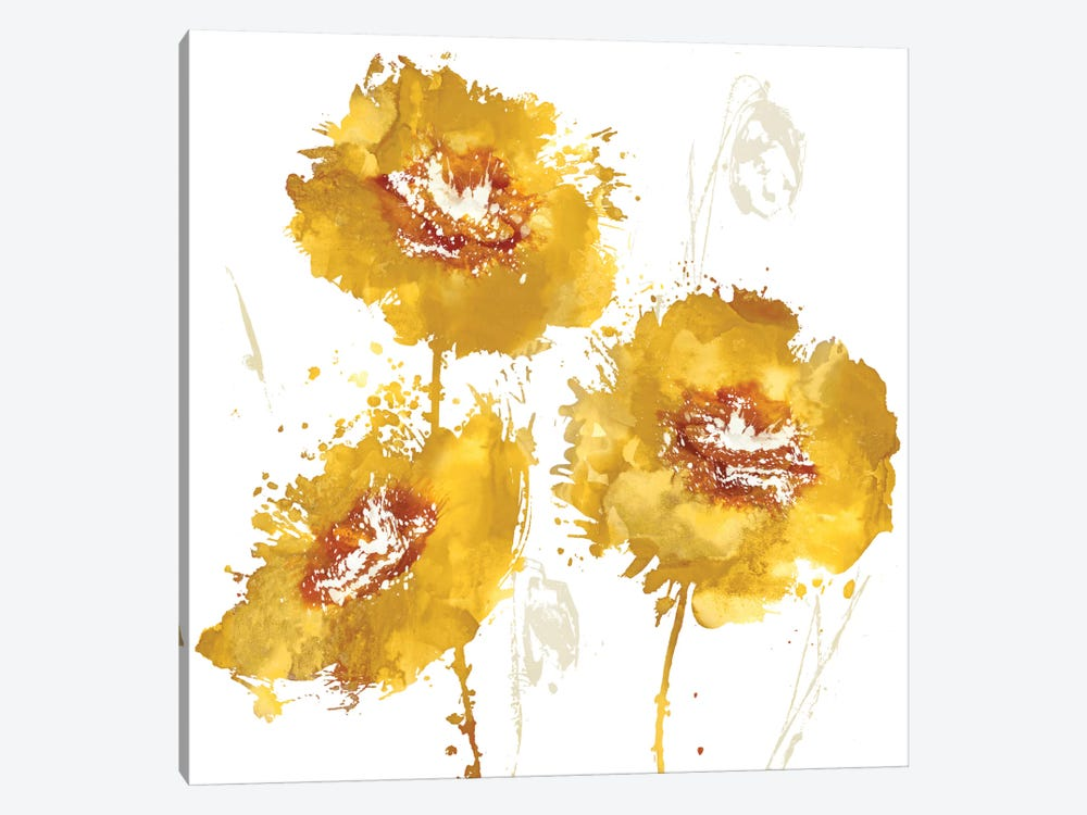Flower Burst Trio In Amber by Vanessa Austin 1-piece Canvas Art