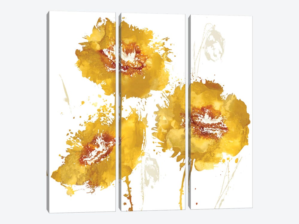 Flower Burst Trio In Amber by Vanessa Austin 3-piece Canvas Wall Art
