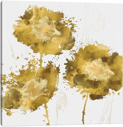 Golden Flower Burst I Canvas Print #AUS25